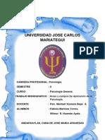 349275252-Areas-y-Modelos-Psicologia.docx