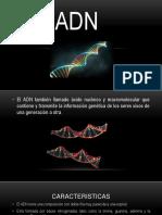 Exposicion ADN