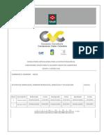 INFORME HIDROLOGÍA, HIDRÁULICA Y SOCAVACIÓN.pdf