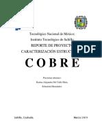 REPORTE COBRE.docx