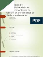 Inflamabilidad y Combustibilidad de Yallourn (2)
