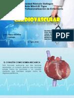 Cardiovascular Presentacion 3