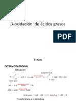 B-oxidación de Ácidos Grasos