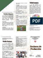 259817491-Triptico-Sectores-de-Produccion-Primario-Secundario-Terciario.doc