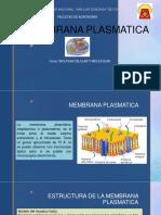 MEMBRANA PLASMATICA SEMANA 3.pptx