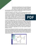 Informe 2 Stafilo y Micrococo