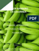 Sector Bananero en Colombia