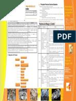 Procediminetos -Fabricacion Carrocerias Vehiculos