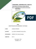 informe-8 (2).docx