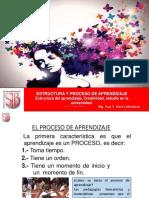 Esstructura aprendizaje y creatividad_20190415093810.pdf
