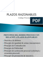 PLAZOS RAZONABLES