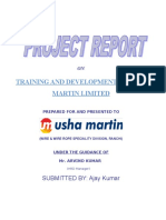 88973448-Usha-Martin-Final-Project.doc