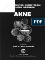 akne_cs (1).pdf