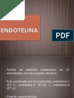 ENDOTELINA.pptx