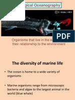 Fe Biological Ocano
