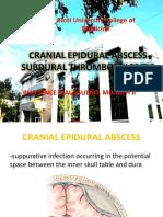 Cranial Epidural Abscess