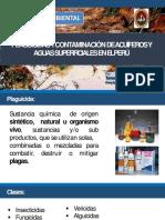 Contaminacion Por Insecticidas-Torres Huillca Luis Fernando