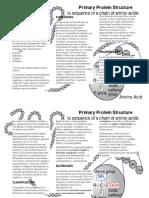 folleto-proteínas-Quimica