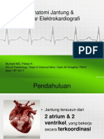 Clinical Mentoring I EKG in Daily Practice PIT PDUI-1