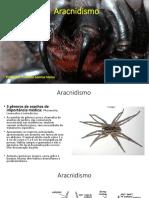 acidentes com animais peconhentos aracnidismo.pdf