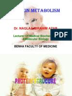 Naglaa Ibrahim Mohamed Azab_protein Metabolism