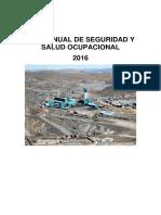 Programa Anual de SSO 2016 1