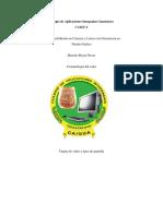 Colegio de Aplicaciones Integradas Guastatoy1