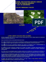 tuberosa-2.pdf