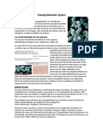 microbiologia.docx