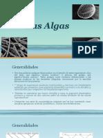 Las Algas.pdf