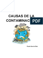 Causas de La Contaminación.