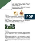 10 plantas medicinales.docx