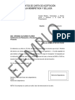 Formato Carta Aceptacion