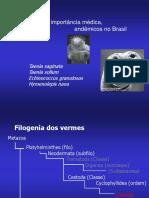 Cestoides.pdf
