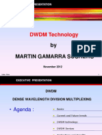 DWDM Executive presentation-2.pdf