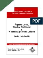 Álgebra lineal y algebra multilienal.pdf