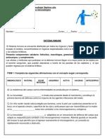 Guía inmunidad bio 8º.docx