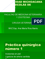 Cirugia I
