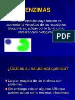 Biocatalizadores.pdf