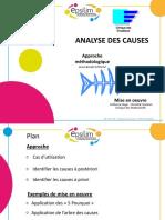 p5 Analyse Des Causes