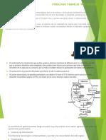 Fisiología y Manejo Pos Cosecha - Conceptos Basicos