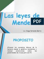 Leyes Mendel2