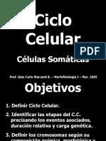 ciclo_celular_y_mitosis (1).ppt