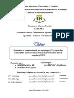 Mémoire au format PDF.pdf