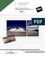 Perfil_Sal_2017.pdf
