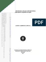 B17acm (1).pdf