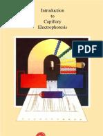 Capillary electrophoresis - eletroforese capilar
