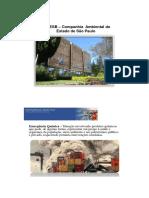 PHILIPPI, Arlindo Jr. Reducão de Riscos Ambientais_Necessário Enfoque Interdisciplinar
