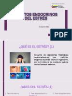 Tema 10, Efectos endocrinos del estres.pptx