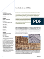 Revolucion del gas de lutitas.pdf